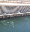 الرى: خفض المياه المنصرفة من خلف السد العالى 25 أكتوبر
