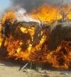 ضبط 8 تكفيريين فى عملية دهم للجيش الثالث الميدانى بجبل الحلال بوسط سيناء