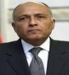 وزير الخارجية: قطر لم تنفذ المبادئ الـ 6.. والجيش يبذل كل الجهد للتصدى للإرهاب