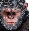 """War for the Planet of the Apes"" يتربع على القمة بـ102 مليون دولار"