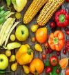 تقنية حديثة لتخزين الطعام بكامل قيمته الغذائية لمدة 1000 يوم