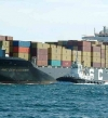 269 مليون دولار صادرات مصر للبرازيل العام الماضي