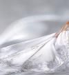 تخلصى من بقع فستان الزفاف المفاجئة بهذه الحيل