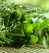 علاج قصر القامة بالأعشاب والأطعمة