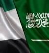السعودية والإمارات تؤكدان استمرار جهودهما لنصرة الشعب اليمني