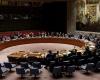 مجلس الأمن يصوت بالموافقة على قرار بشأن إصلاح عمليات حفظ السلام الدولية