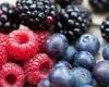 التوت يخفض خطر الإصابة بأمراض القلب