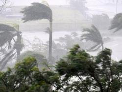 بالفيديو.. مذيعة أمريكية تغطى إعصار إرما تتلقى صدمة موجعة
