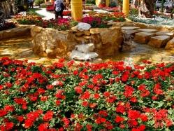 افتتاح معرض زهور الربيع فى نسخته الـ 88 بحديقة الورمان بمشاركة 200 عارض