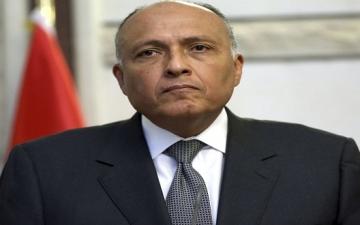 تعليق مصر على الهجوم الإرهابى بغرب النيجر