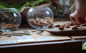 بالصور .. تماثيل منحوتة من لب ثمرة الأفوكادو