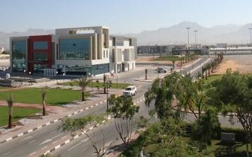 الجامعة الأمريكية في رأس الخيمة تفعّل تعاونها مع جامعة تكساس في أرلينغتون
