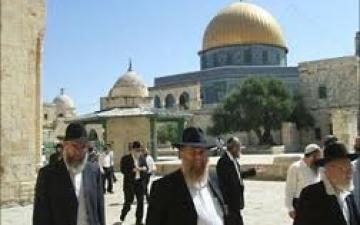 """دعوات وفتاوى يهودية جديدة للتحريض على """"اقتحام الأقصى"""""""