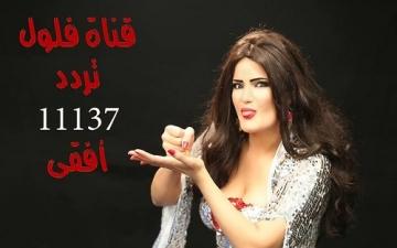 مفاجأة .. سما المصرى تعلن عودة قناة فلول بعد سداد 20 ألف جنيه غرامة