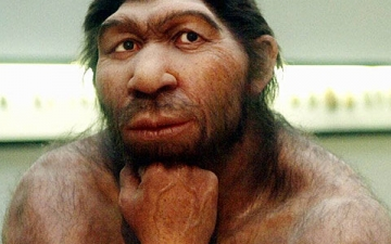 النياندرتال شبيه الإنسان .. انقرض منذ 40 ألف سنة