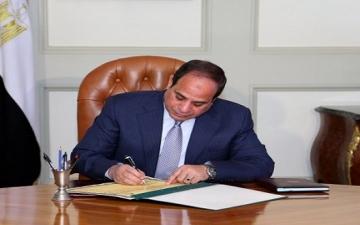 تعيين محمد أمين نصر مستشارا للرئيس للشئون المالية
