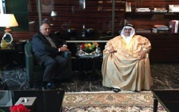 شكرى يبحث مع نظيره البحرينى العلاقات الثنائية والقضايا الإقليمية