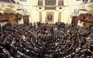 """رئيس دفاع البرلمان: """"اللى معاه أموال الدنيا ومصر مش عاوزاه.. مش هتديه الجنسية"""""""