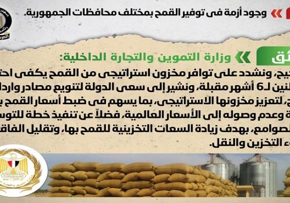 الحكومة تنفي وجود أزمة في توفير القمح بمختلف محافظات الجمهورية