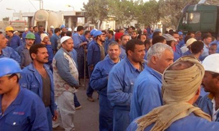 """"""" المراغي """" يناقش أزمة العمال المفصولين الأسبوع المقبل"""