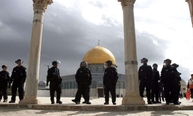 الموقع يعرض …عام كامل من الإنتهاكات للمسجد الأقصى