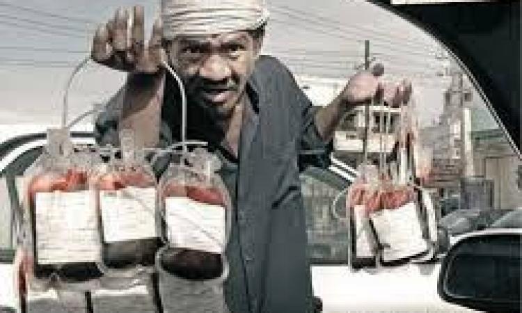 بائع زهور يستخدم إبليس فى إدارة مصر