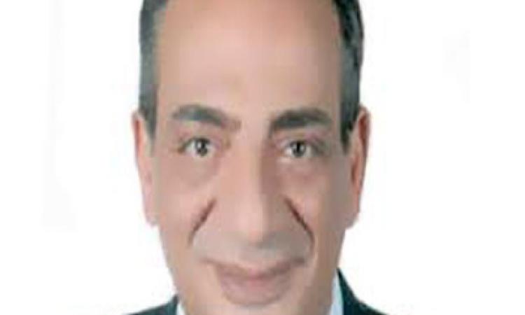 ترحيب سياسى باختيار محلب لرئاسة الوزراء