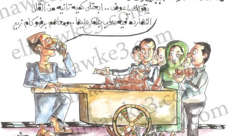 كاريكاتير ….استقالت حكومة الببلاوى