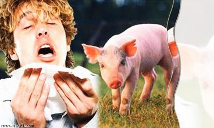 ارتفاع نسبة المشتبه بإصابتهم بأنفلونزا الخنازير في السويس إلى 19 حالة