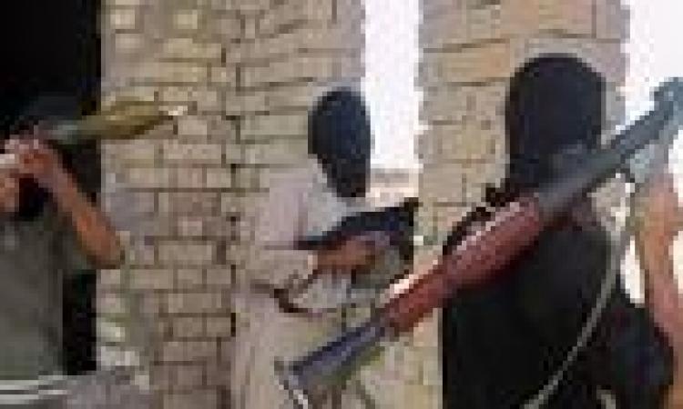 ضبط 195 بندقية الية بالسلوم أثناء تهريبها إلى داخل البلاد