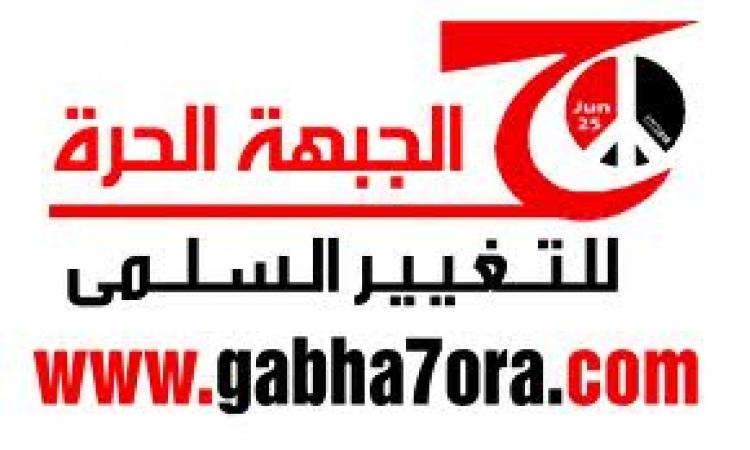 """""""قوي الثورية"""" استقالة حكومة الببلاوي فى هذا التوقيت غامضة"""