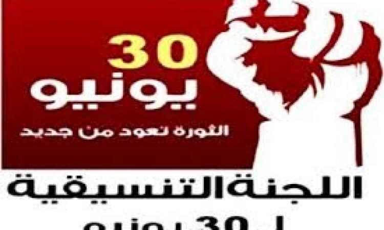 """باحث سياسي:قرار""""عنان"""" يحمي المؤسسة العسكرية من الانقسام"""