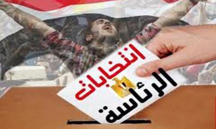 وصول 3 مراقبين إلى القاهرة لمتابعة الانتخابات الرئاسية
