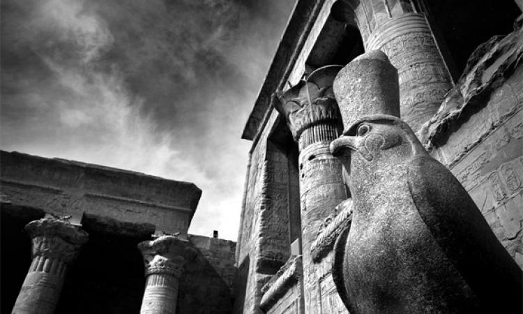 «حورس الحي» يكتب: «معبودكم تحت قدمي»