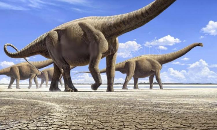 اكتشاف أكبر ديناصور عاش على وجه الأرض.. وزنه 14 فيلا