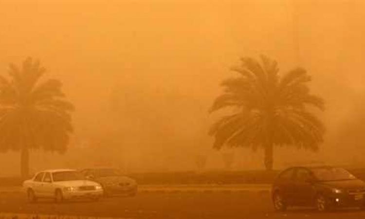 عواصف أسوان تسقط 4 منازل و243 نخلة وشجرة و6 أعمدة إنارة