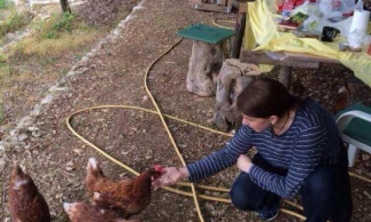 ماجدة الرومي وحكايتها مع الدجاج !