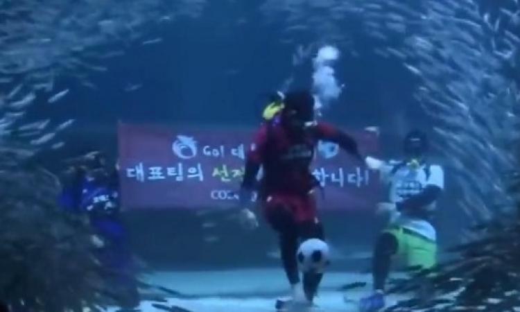 بالفيديو .. حمى مونديال البرازيل تحت الماء في كوريا الجنوبية !!