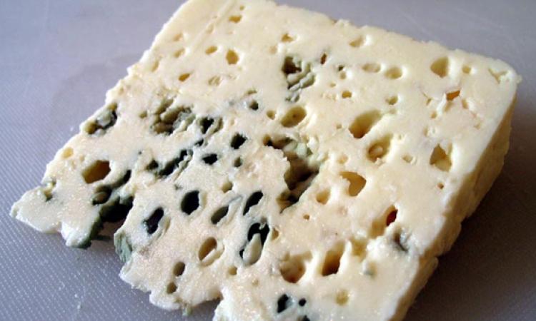 سر اللون الأزرق في الجبن الريكفورد الفرنسي