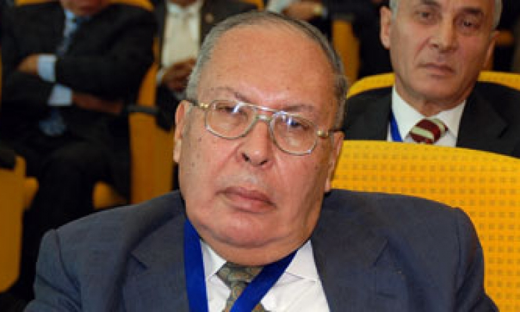 مساعد وزير الخارجية الأسبق: يجب أن تهتم مصر بإفريقيا حفاظا على الأمن القومي