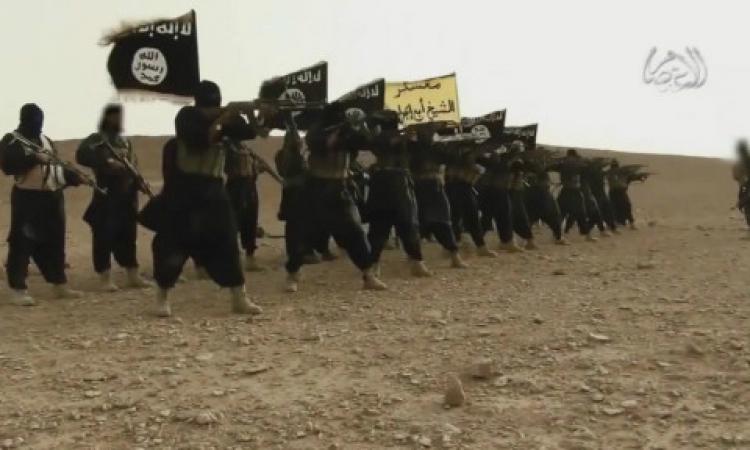 الديلي تليجراف: « القوات المسلحة القوية أمر حيوي»
