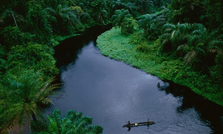 رئيس «نهر الكونغو»: مشروعنا أكبر تكتل اقتصادي مصري في إفريقيا