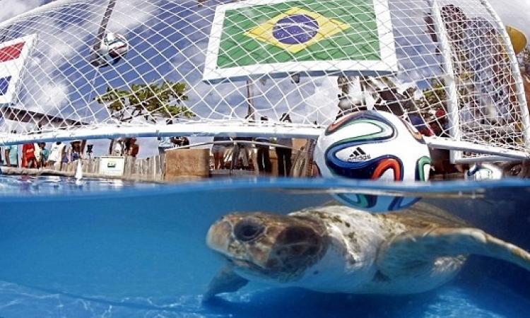 خمسة أمور تحدث لأول مرة في كأس العالم