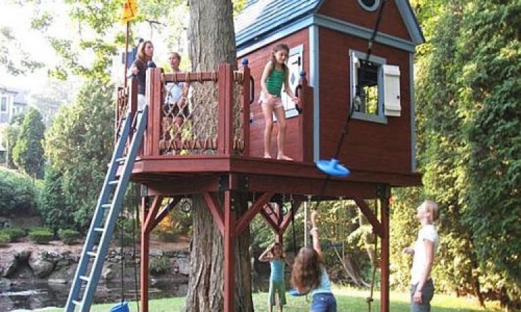 بالصور.. أفكار إبداعية لبيوت الشجر المخصصة للأطفال
