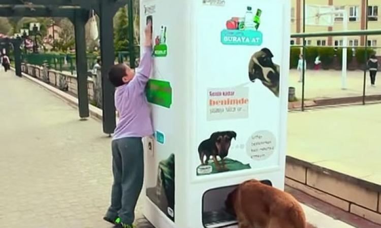 بالصور .. آلة جديدة لإطعام الكلاب الضالة بتركيا