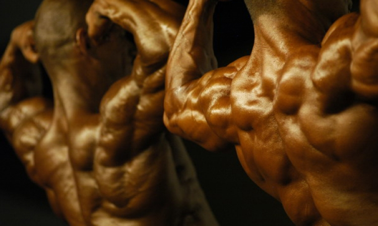 دراسة أمريكية تحذر من استخدام هرمونات النمو لبناء العضلات