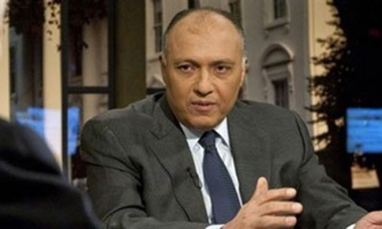 وزير الخارجية : مصر لن تُعدل مبادرتها بشأن غزة