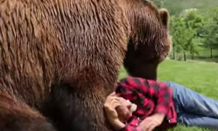 توفى بأزمة قلبية فأكله الدب