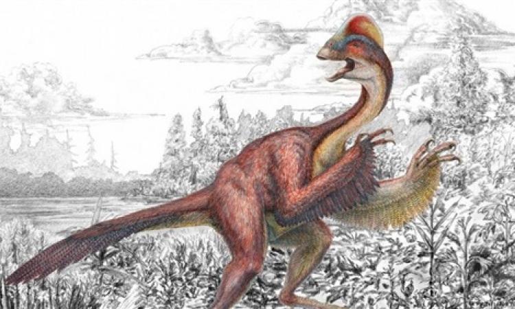 العثور على حفرية لديناصور يشبه الطيور