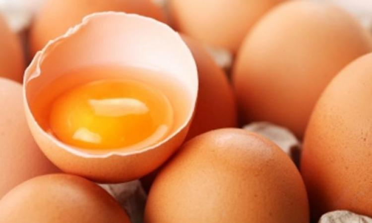 صدق أو لا تصدق.. البيض الفاسد يعالج السكتات الدماغية والنوبات القلبية وخرف الشيخوخة